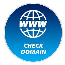 เช็คโดเมน (Check Domain) หรือ WHOIS